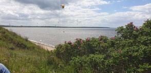 Privatspot Kuhberg der Wassersportschule Oceanblue Watersports in Rerik am Salzhaff- Deine Kiteschule Rerik