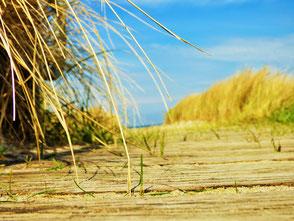 Strandpromenade Rerik- Spüre das Seegras nach deinem Surfkurs oder Kitekurs in deiner VDWS Surfschule Rerik an der Ostsee- Deine VDWS Kiteschule am Salzhaff
