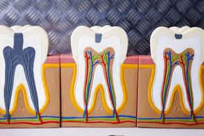Kontakt zu Zahnarztpraxis Dr. Bisso Andrea Wahl Dr. Sayed