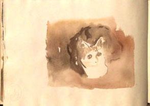 Skizzenbuchseiten, Katze in Brauntönen