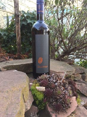 """Etikettierter Wein der """"Winzlinge"""" auf Sandstein Trockenmauer in idyllischer Natur"""