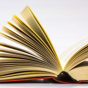 le lombard bar - jura - bibliothèque libre - llb pics - le long barbare