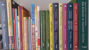 Literatur Heilkunde Heilpflanzen Sauerland Gesundheitslädchen Winterberg