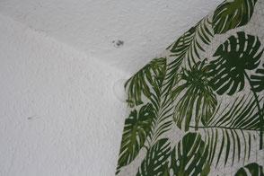 Dschungellook, Dschungelstyle, Schlafzimmer verschönern, Caballo Couture, Vorhänge selber nähen, Kissen selber nähen, Schrank verschönern, Gardinenstange anbringen, Vorhänge nähen