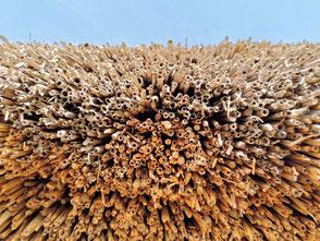 historische Dachdeckung Stroh
