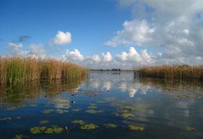 Etang d'Amel - Zone Natura 2000 - Randonnees - peche