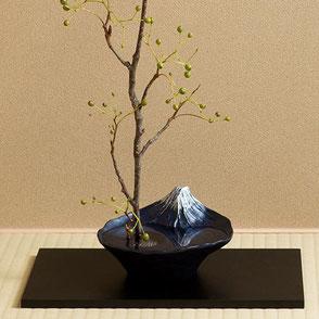 ikebana sakasafuji flowervase