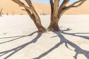Sossusvlei, Namibia, Foto: Ria Henning-Lohmann