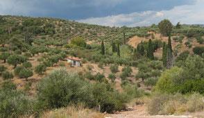 Frau kauert lachend am Boden, Peloponnes