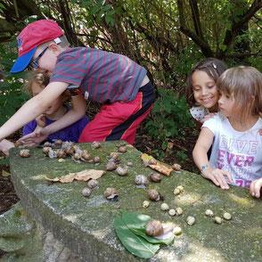 Kinder spielen im Garten.