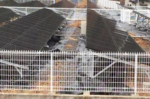 太陽光発電防草シート