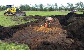Ausgrabung von tausendjährigen Kauri Bäumen in Neuseeland für exklusive Holztische, außergewöhnliche Esstische