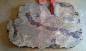 Designertisch als unbearbeitete Naturholz Tischplatte aus altem Kauri Holz, Esstisch aus großer Wurzel an einem Stück gewachsen