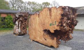 Beaupoil Michael Werkstatt große Kauri Wurzel für seltene Holztische kunstvolle Naturholztische einzigartige Esstische