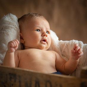 Photographie, bébés, naissance, Antonia photographie