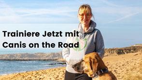 Urlaub mit Hund, Wohnmobilurlaub mit Hund