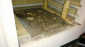 Die Bodenplatte im Ofen gewachsen