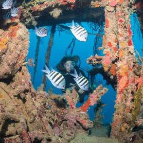 Foto: Aquanauts Grenada