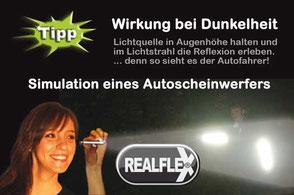 REALflex-Simulation-Reflektion