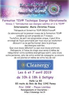 benoit-dutkiewicz-formation-cleanergy-geneve-avril-2019-aura-therapie-holistique