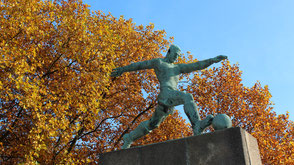 Herbst im Friedrich-Ludwig-Jahn-Sportpark Prenzlauer Berg. Foto: Helga Karl