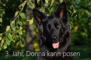 Donna kann posen