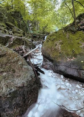 Altenburg, Kalterer See, Bergurlaub mit Hund, Rastenbachklamm, Wandern mit Hund in Südtirol