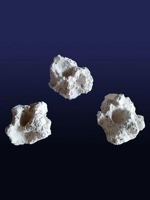 Ablegersteine und Muschelhalter
