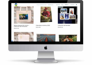 diseño de paginas web – diseño de sitio web – diseño de páginas web en México - diseño de paginas web profesionales