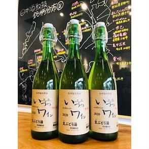 いづつワイン生ぶどう酒 井筒ワイン 日本ワイン