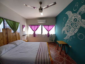 Hostels backpackers and Bed and breakfast in La Paz Mexico