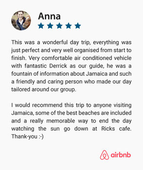 Five Star Positive Guest Review on IRIELAB Tours company, that provides tours in Jamaica