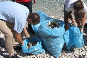 Strand säubern Kroatien