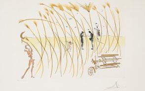 Salvador Dali Bilder zu Kaufen