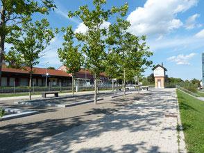 Landschaftsarchitekt für Parkanlagen, Parks, Grünbereiche