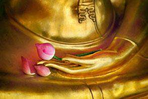 Lu Jong - Tibetisches Heilyoga Kompakt Kurs Wege zum Sein