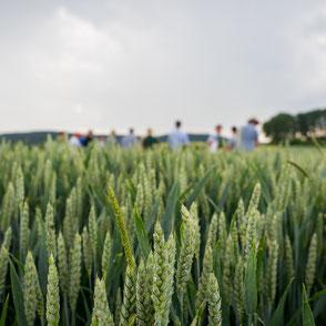 Landbautag