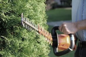 LLB Labhart Liegenschaften Betreuung Gartenunterhalt