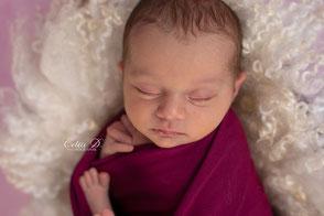 Séance photo bébé dijon beaune chalon sur saône Nuits saint georges