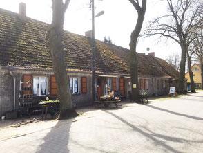 Langes Haus Altfriedland Kräuterwanderungen