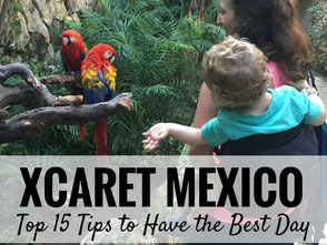 Top Tips for Visiting Xcaret Park in Mexico with kids. Read this before you go! | Family Travel | Travel with kids | Toddler Travel | #familytravel #toddlertravel #travelwithkids #mexico #mayanriviera
