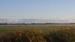 Umsetzung von Natura 2000