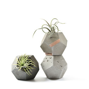 Concrete Dodecahedron Planter, by PASiNGA