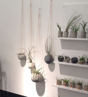 Hand Formed Concrete Hanging Globes by PASiNGA