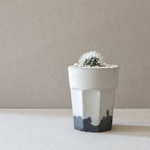 Cactus planting with the PASiNGA concrete coffee glass planter kit