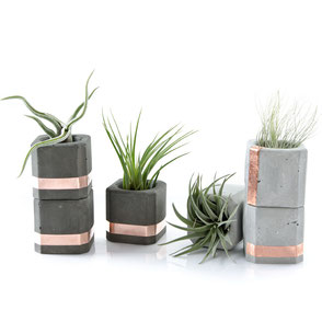 Concrete Copper Planter Cups by PASiNGA