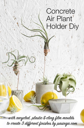 DIY Concrete Air Plant Holder Tutorial By PASiNGA