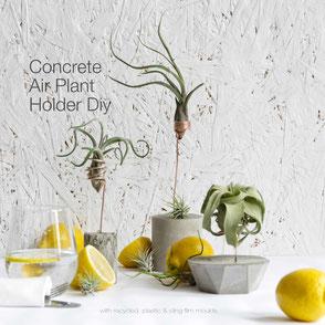 DIY Concrete Copper Air Plant Holder Tutorial