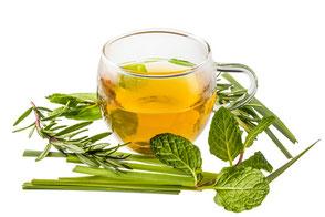 Kräutertee in gläserner Tasse, rundherum liegen unterschiedlische grüne Pflanzenteile.