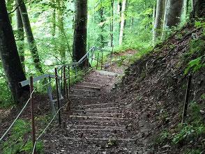 Patrik Kneubuehl liebt die Natur von Bern